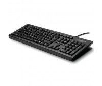 Клавиатура HP Classic Wired Keyboard (WZ972AA#ACB)